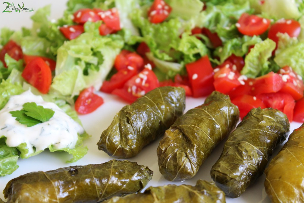 Greek Stuffed Vine Leaves - Dolmadakia Recipe