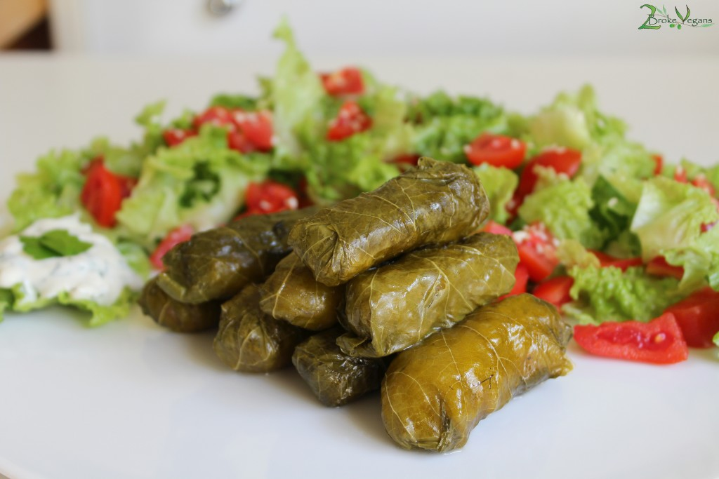 Greek Stuffed Vine Leaves - Dolmadakia Recipe Traditional Greek Food, Gluten Free